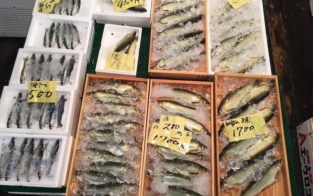 TsukijiFoodieFamily20